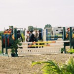 Walking at WEF